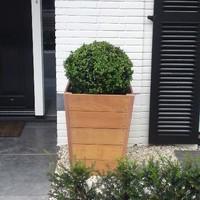 Tuinvoordeel